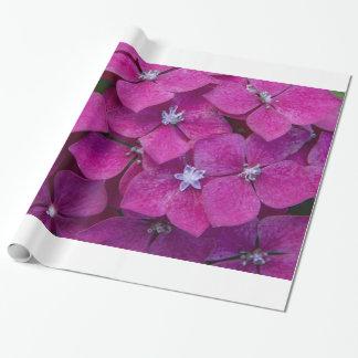 Papier Cadeau Fleurs roses d'hortensia