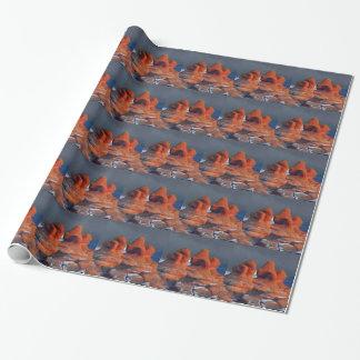 Papier Cadeau formes des roches rouges