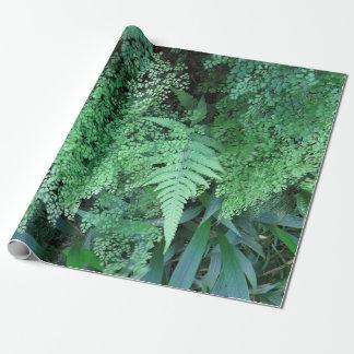 Papier Cadeau Fougères hawaïennes