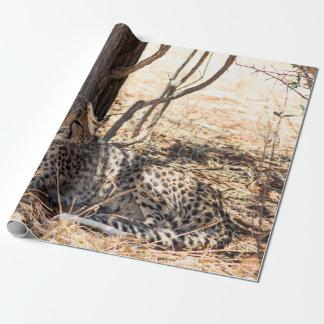 Papier Cadeau Guépard détendant sous un arbre