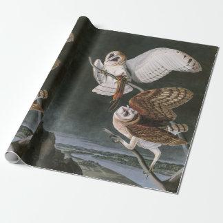 Papier Cadeau Hiboux de grange, les oiseaux de l'Amérique John