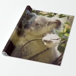 Papier Cadeau koala doux 2b