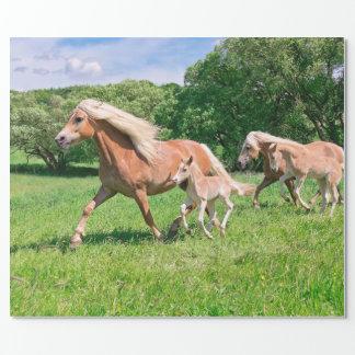 Papier Cadeau Les chevaux de Haflinger avec les poulains mignons