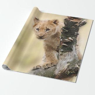 Papier Cadeau Lion CUB mignon dans un arbre