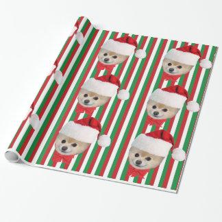 Papier Cadeau Noël, chien de Pomeranian, casquette de Père Noël