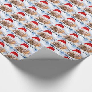 Papier Cadeau Noël de bernard l'ermite petit