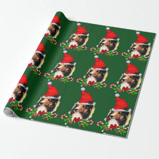 Papier Cadeau Noël de Sheltie Père Noël