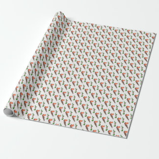 Papier Cadeau Noël Robin