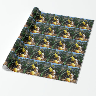 Papier Cadeau Oeuf de pâques de lapin et de jaune