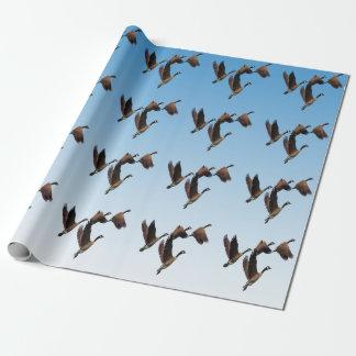 Papier Cadeau Oies canadiennes pilotant ensemble la conception