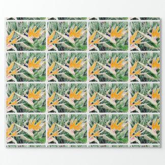 Papier Cadeau Oiseau du paradis hawaïen tropical