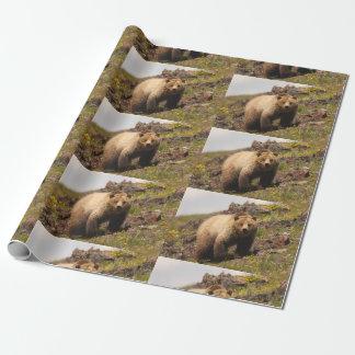 Papier Cadeau ours