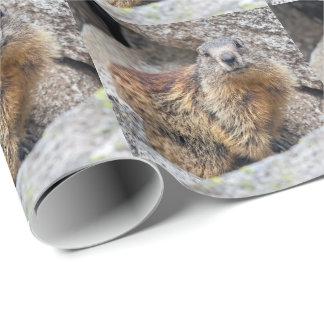 Papier Cadeau Papier d'emballage alpin de Marmot