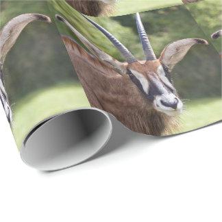 Papier Cadeau Papier d'emballage d'antilope rouane