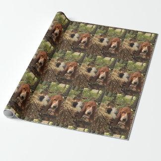 Papier Cadeau Papier d'emballage de chien de basset