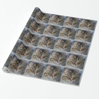 Papier Cadeau Papier d'emballage de portrait de chat de ragondin