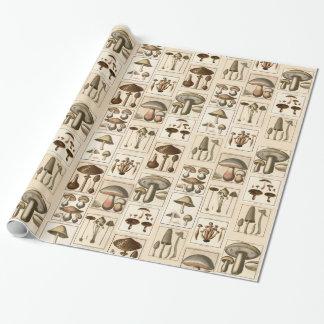 Papier Cadeau Papier d'emballage d'impression botaniques