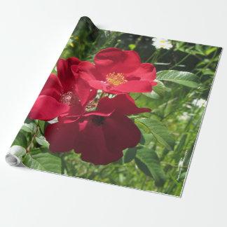 Papier Cadeau Papier d'emballage floral simple de roses rouges