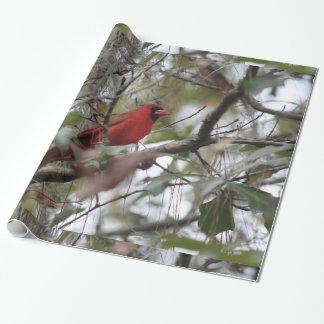 Papier Cadeau Photo cardinale gentille