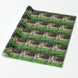 Papier Cadeau Photo grunge d'effet de guépards