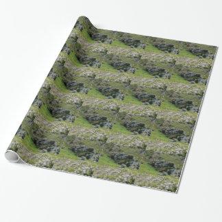 Papier Cadeau pierre verte de merveille