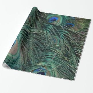 Papier Cadeau Plumes magnifiques de paon