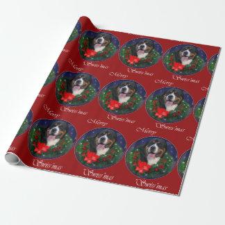 Papier Cadeau Plus grand Noël suisse de chien de montagne