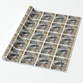 Papier Cadeau Raton laveur