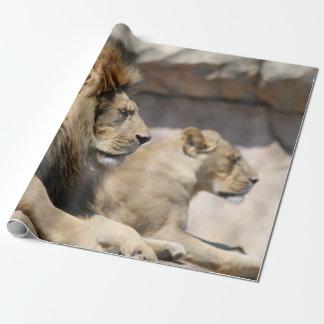 Papier Cadeau Repos de lions