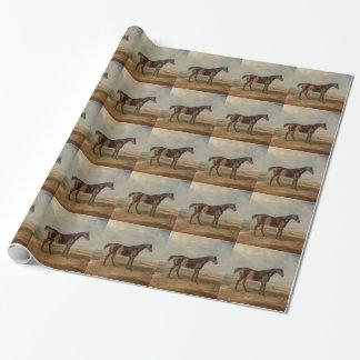 Papier Cadeau Salle de James - Dr. Syntax, un cheval de course