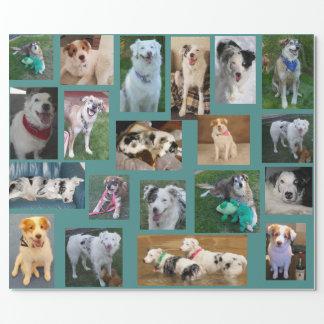Papier Cadeau Tout le chien enveloppant Paper2