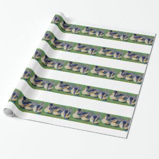 Papier Cadeau Trois poussins de canards d'amis