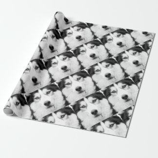 Papier Cadeau Un chien de traîneau sibérien noir et blanc