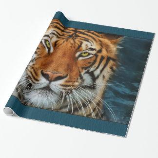 Papier Cadeau Visage de tigre