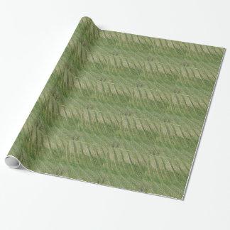 Papier Cadeau Vue pittoresque de flanc de coteau de roulement
