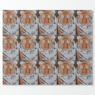 Papier Cadeau Yeux de tigre