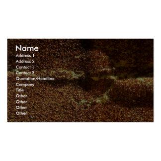 Papier de sable carte de visite standard
