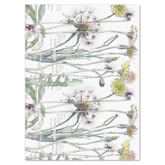 Papier de soie de soie botanique de fleurs