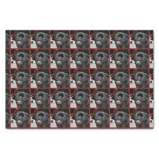 Papier de soie de soie de chien de carlin de Noël