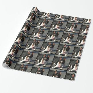 Papier d'emballage cadeau de chien de bull-terrier papier cadeau