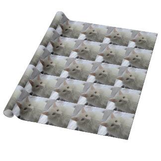 papier d'emballage de chat angora turc blanc papier cadeau noël