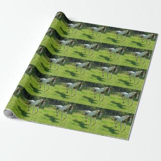 Papier d'emballage de cheval de Piant Papier Cadeau