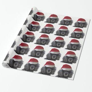 Papier d'emballage de chien de caniche de Noël Papiers Cadeaux Noël