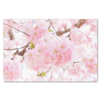 Papier Mousseline Fleurs de cerisier roses de Sakura d'arbre