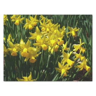 Papier Mousseline Fleurs gaies de ressort des jonquilles I jaune