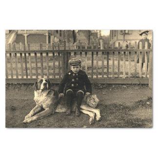 Papier Mousseline garçon de 1890's s'asseyant sur la photographie de