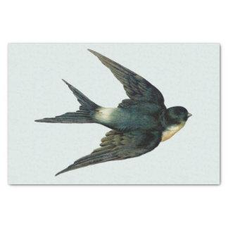 Papier Mousseline Illustration vintage d'oiseau d'hirondelle