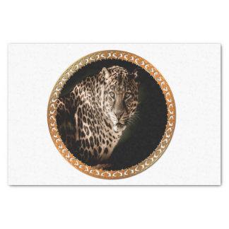 Papier Mousseline léopard repéré par brun jaunâtre vous regardant