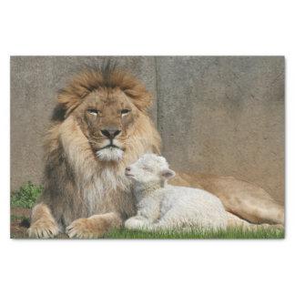 Papier Mousseline Noël de lion et d'agneau