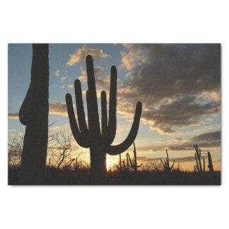 Papier Mousseline Paysage de désert du coucher du soleil II Arizona
